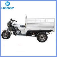 Chinese 150cc water cooled engine Three Wheels Motorcycle for Sale cargo tricycle