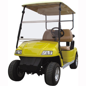 2 person ce approved china supplier best factory supply golf cart body