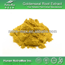 Hot Sell Golden Seal Root Extract/Golden Seal Root P.E./Golden Seal Root Powder
