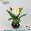 18cm high artificial cream protea flower in black round ceramic pot