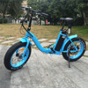 New promotion 6061 alloy folding e-bike manufactured in China