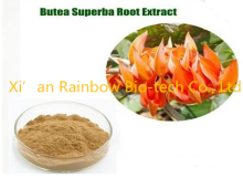 butea superba extract powder 20:1 Brand new noni extract powder