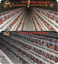 China Supplier 100% Galvanized Broiler Rearing 10000 Layer Chickens Poultry Farm Bird Battery Cage For Sale