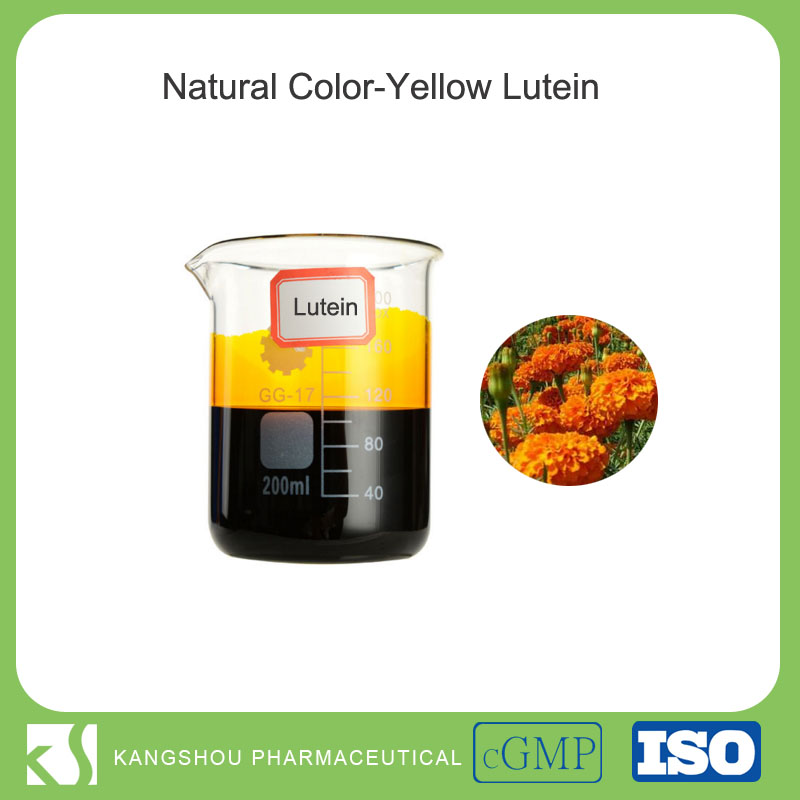 Natural color Yellow oil soluble lutein liquid yellow natural color