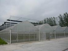 XINHAI Big customers cooperation wholesale diy polycarbonate greenhouse made in China