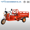 Electric three wheel cargo motorcycles tricycle