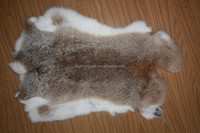 Top Quality Coyote Pelt Rabbit Pelts for Sale