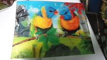 hot sale high definition 3d wall painting