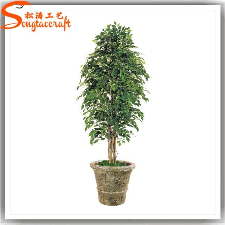 Artificielle ficus bonsa plantes gros bonsai id de produit 60227714760 - Bonsai arbre prix ...