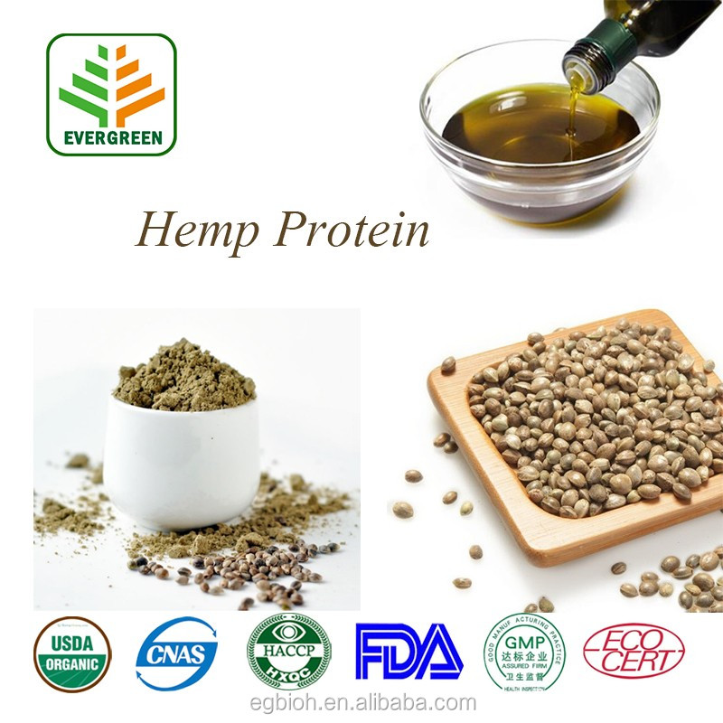 Wholesale NOP EOS certified Hi Fiber Organic Hulled Hemp Protein Powder chocolate and vanilla for protein bar and food