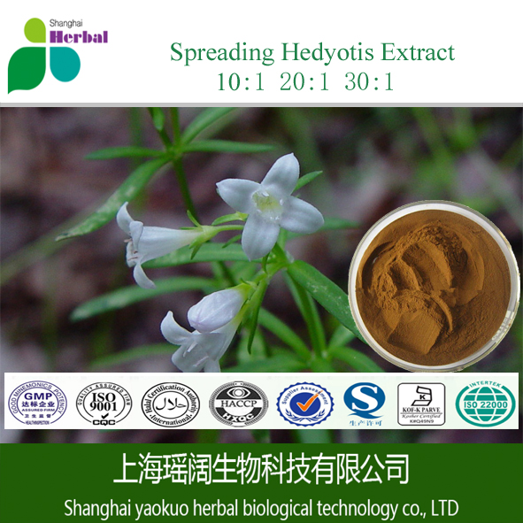 10:1High quality 100% natural Spreading Hedyotis Herb Extract/Hedyotis Diffusa Extract