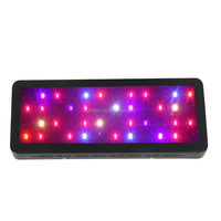 3 years warranty Red Blue 8 wavelength bands 250w spider cob led grow light