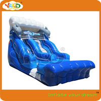 Dolphin inflatable water slide for sale