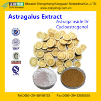 Hot Sale of Astragalus Extract Astragaloside IV from GMP Factory