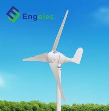 300W Horizontal Axis high quality low price camping wind generator