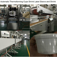 Pp Cup Thermoforming Machine
