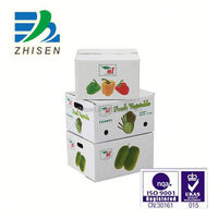 factory direct sale PP corrugated fruit packing box