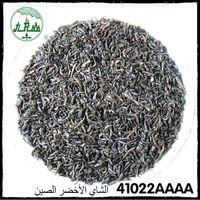 Hot Selling 2016 China Green Tea