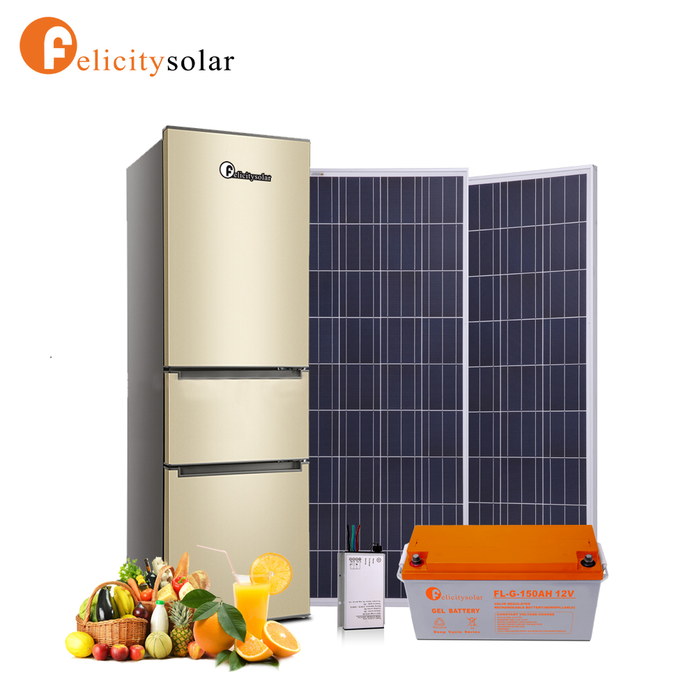 Felicity home use 196L DC solar <strong>refrigerator</strong> for solar home system