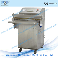 VS-600E Pillow external vacuum packing machine with CE and good quality