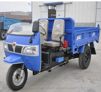 CE certification adult 3 wheel tricycle/automobile manufacture in china/enclosed three wheel scooter