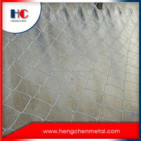 China supplier decorative chain link fence