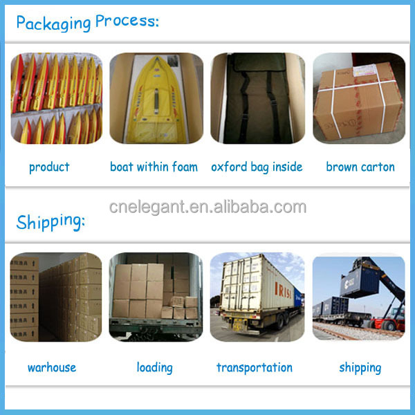 professional packaging & shipment.jpg