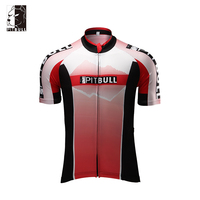 Hot Selling New Design funny custom wholesale cycling t shirt for men