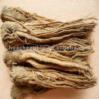 Pure Natural Angelica Sinensis Extract