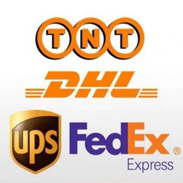 global_express_service_dhl_tnt_fedex_ups_ems[1]_.jpg