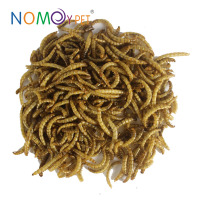 Nomo Goody meat Taste dried Tenebrio molitor, dried mealworm pet snack, pet products