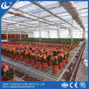 Agricultural Movable Greenhouse Benches For Vegetables