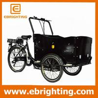 pet trike professional 3 wheel electric cargo bike dealer