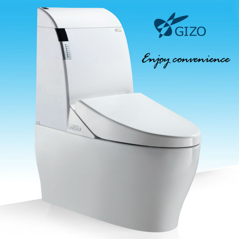 Electronic portable smart toilet for home design