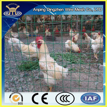 Welded Galvanised PVC Plastic Coated Fencing Chicken Wire Mesh Aviary Garden