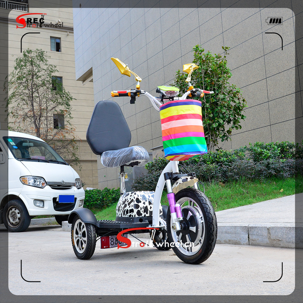 500W 48V12Ah 3 wheel electric scooter with cabin for Sale made in China