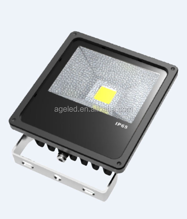 LED ligth source 8000 lumens 80W 100W LED floodlight led lighting