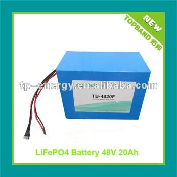 Top Selling Lifepo4 48v Battery Pack with BMS Protection + Charger