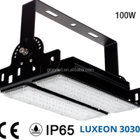 New Design Outdoor IP65 100w Led