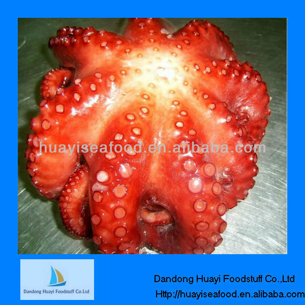 Competitive price baby octopus supplier