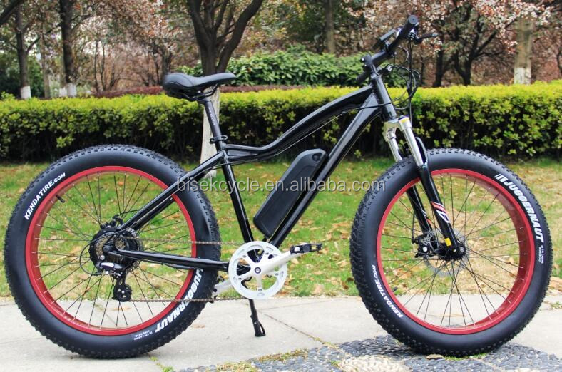 fat tire land cruiser electric bicycle with bbs02 motor with oem service