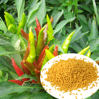 npk 12-12-17 2mgo fertilizer liquid nitrogen for sale