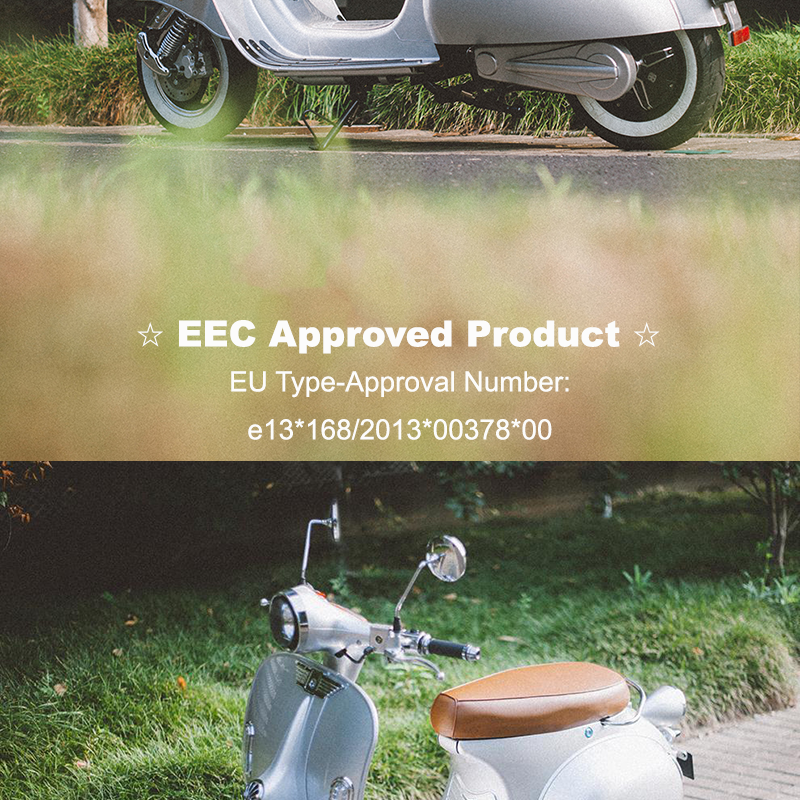 ECE Classic 2 wheel Electric Scooter electrico callejero  Vespa