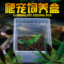 Nomo wholesale plastic transport breeding box small chameleon cage