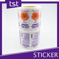 Top Quality Transparent Plastic Sticker Sheet Printing