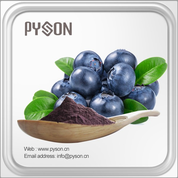 New design high quality celery seed extractblueberry extract with great price