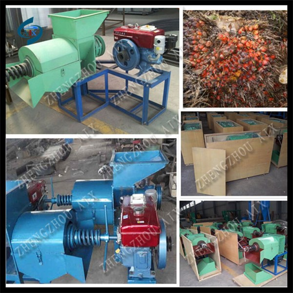 African specialized palm oil press machine