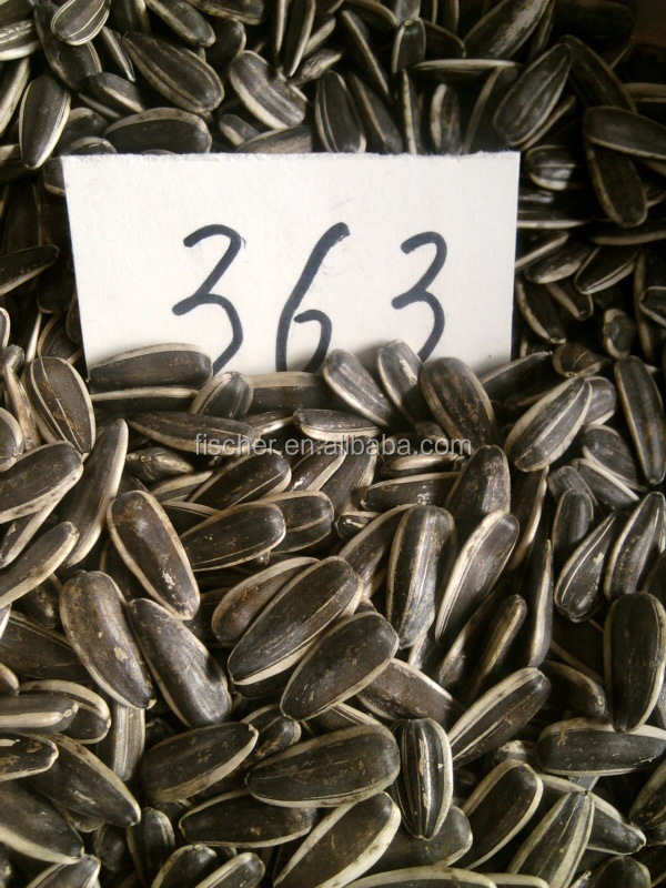 2014 chinese new cheap shelled edible sunflower seeds -363