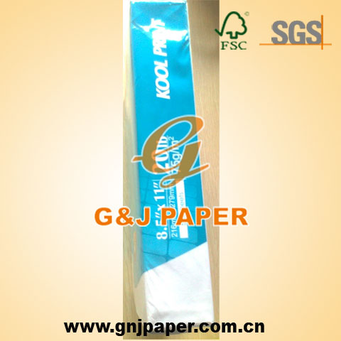 Letter Size Paper 70gsm Ream White with Good Price