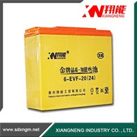 China Electric Vehicles battery /battery pack 12v